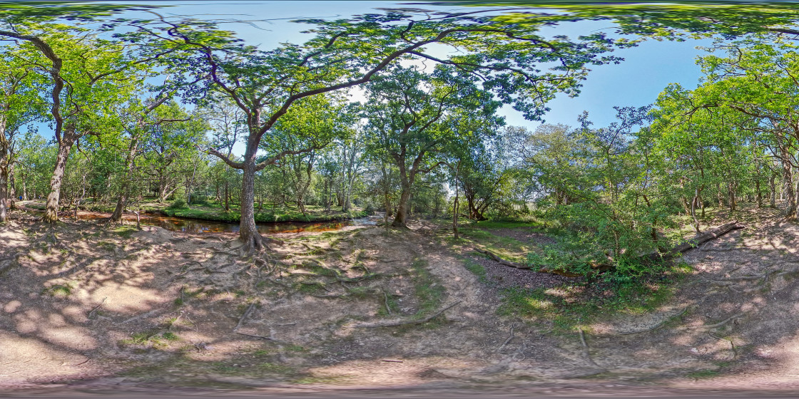 """Ober Water near Puttles bridge in Hampshire (360VR)"" stock image"