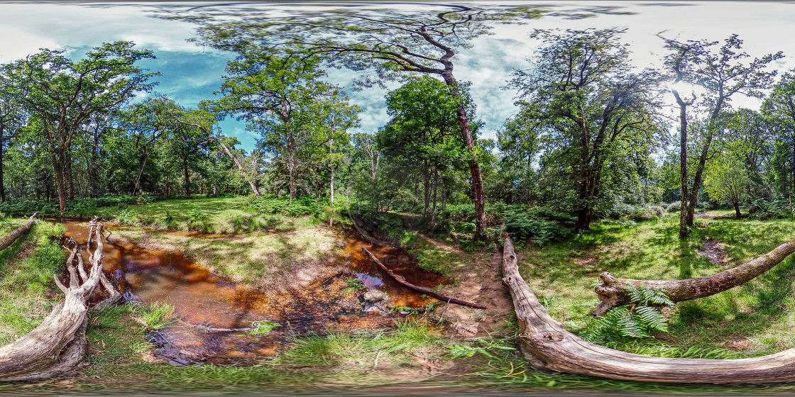 """""""Flechs Water in Hampshire (360VR)"""" stock image"""