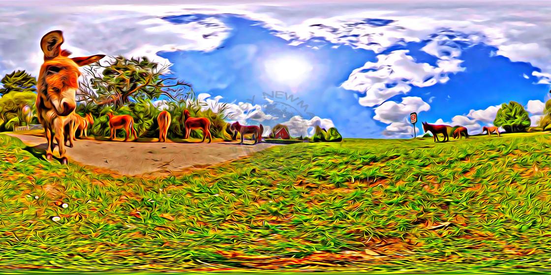 """Donkeys in Beaulieu. (360Vr digital art)"" stock image"