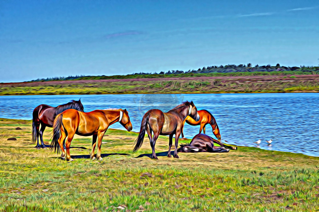 """""""Ponies next to pond in Hampshire. (digital art)"""" stock image"""