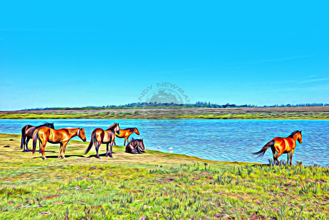 """Ponies next to pond in Hampshire. (digital art)"" stock image"