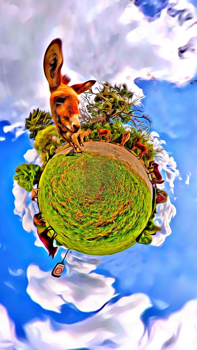 """Donkeys in Beaulieu (digital art)"" stock image"