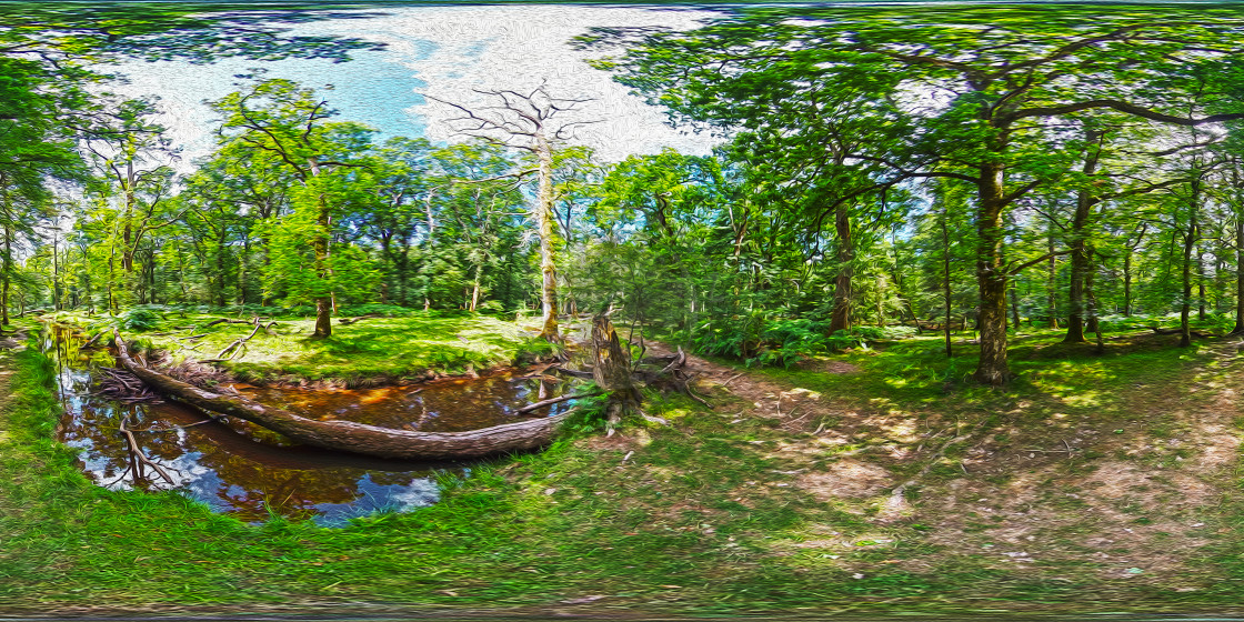 """""""Blackwater Stream in the New Forest (306VR Digital art)"""" stock image"""