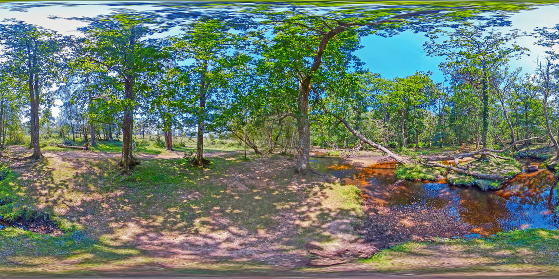 """""""Ober water in the New Forest (360VR Digital art)"""" stock image"""