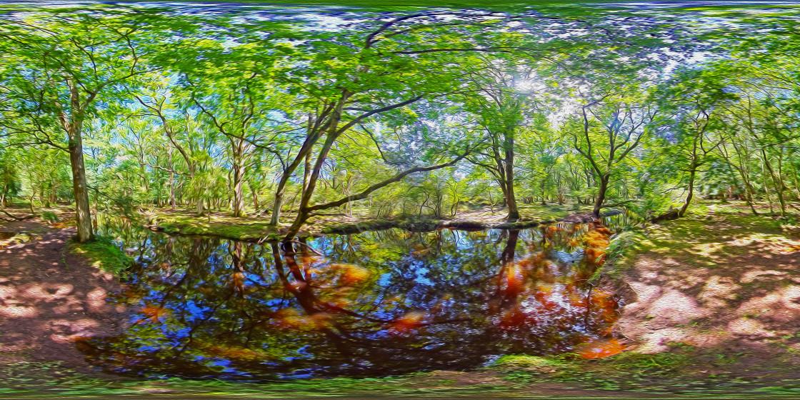 """""""Forest Stream in summertime (360VR Digital art)"""" stock image"""