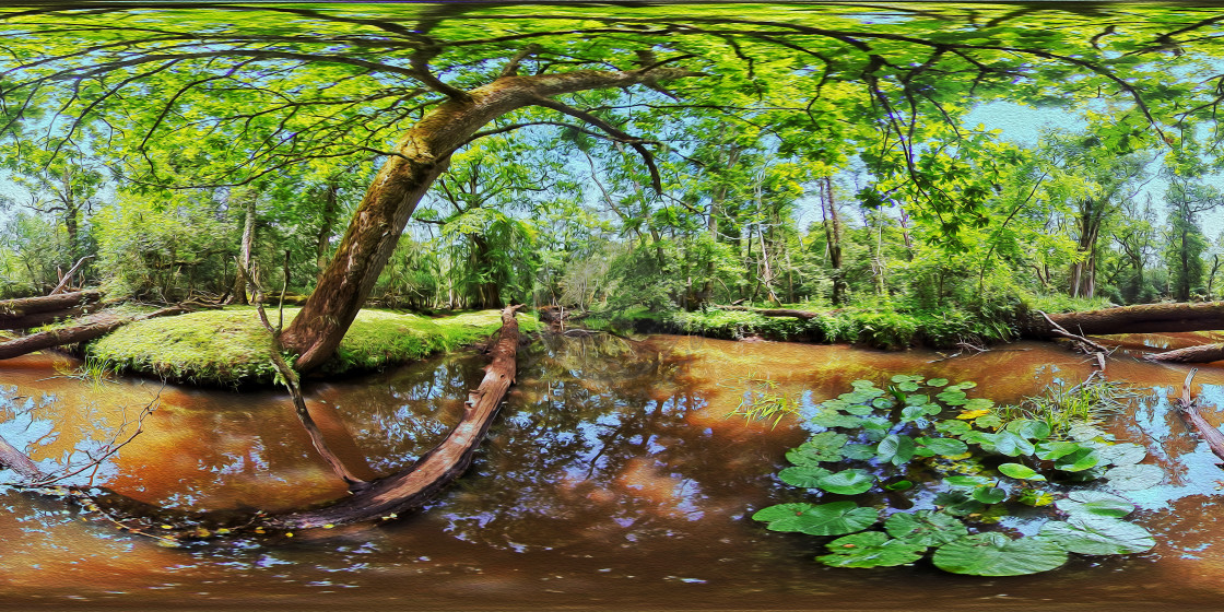 """""""Beaulieu river in the New Forest (360VR Digital art)"""" stock image"""