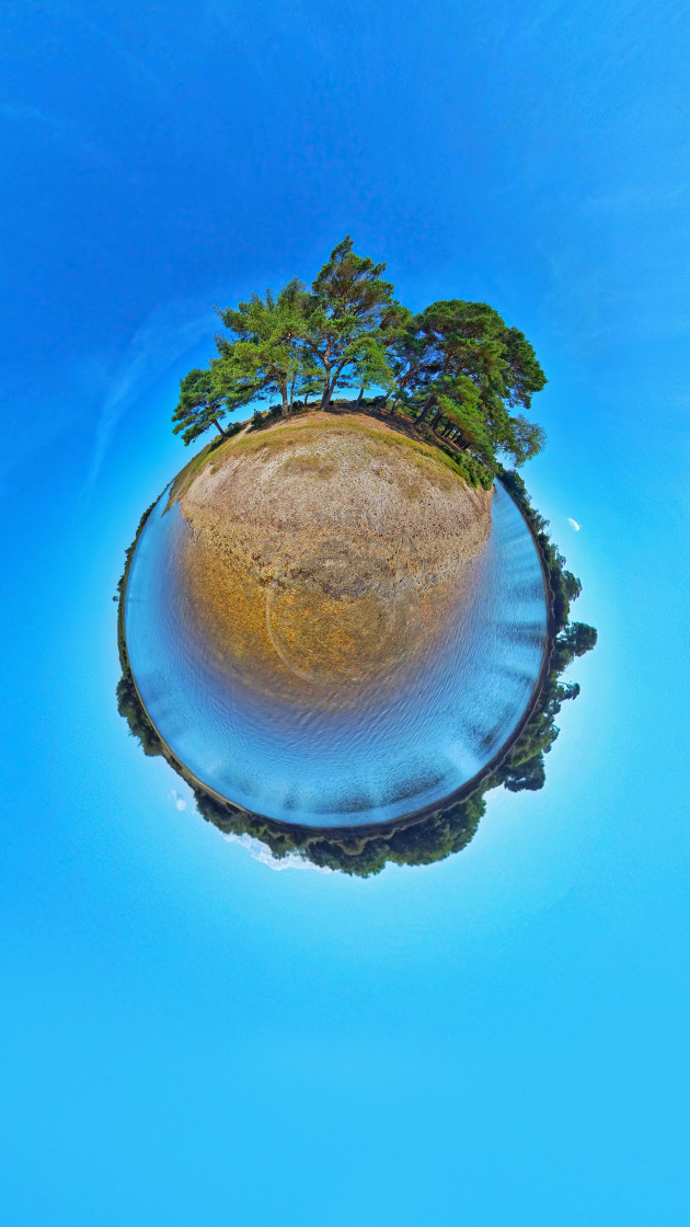"""Hatchet pond in the New Forest"" stock image"