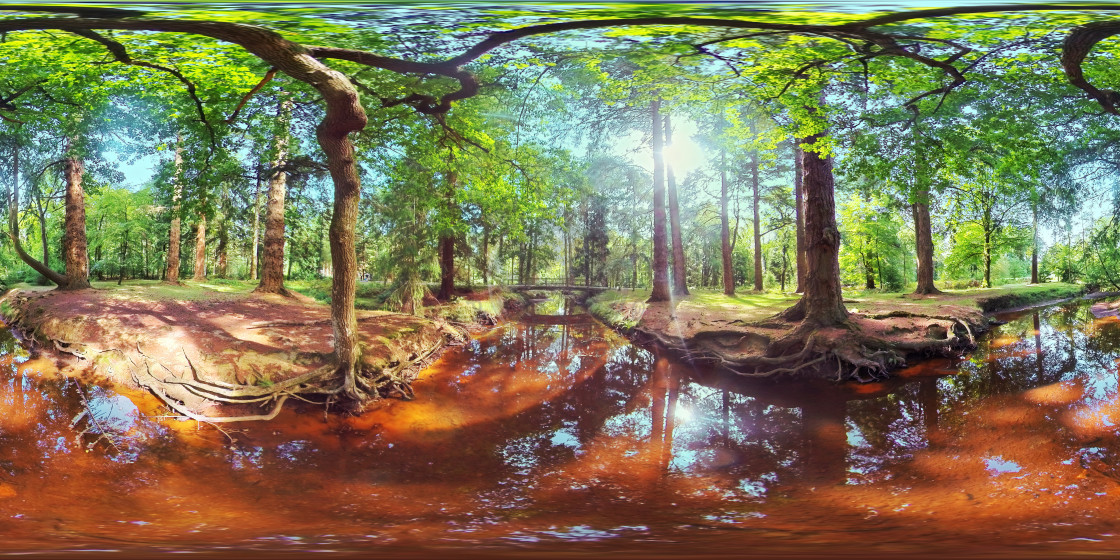 """Blackwater stream in the New Forest"" stock image"