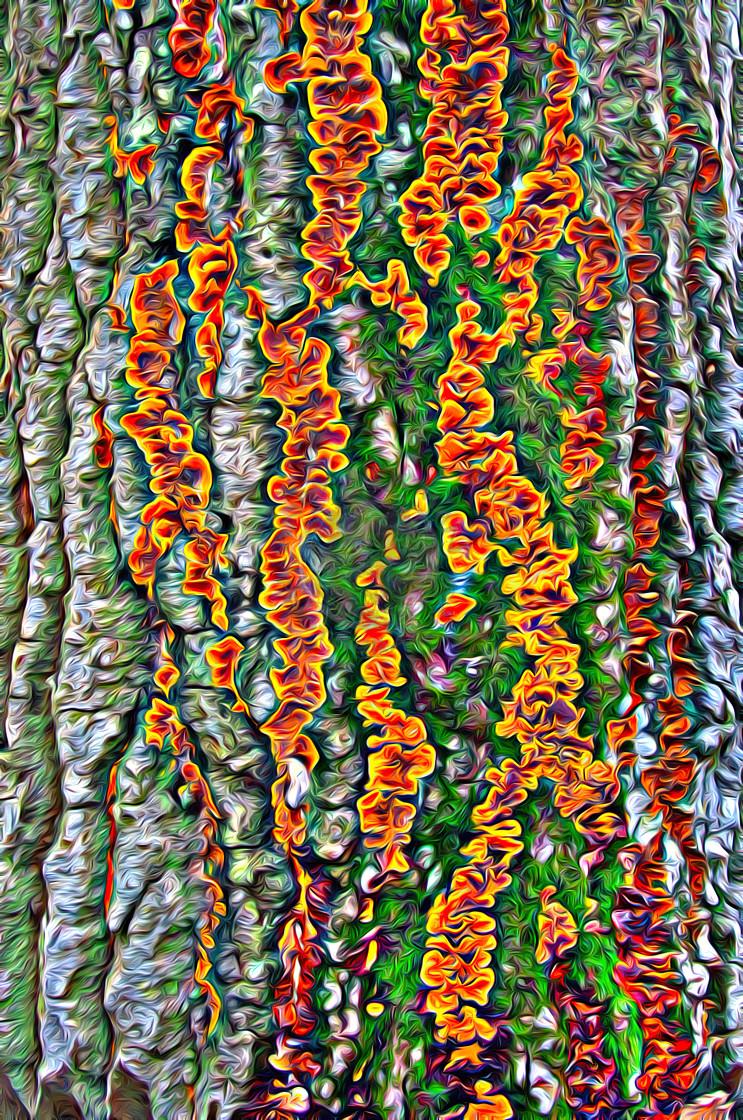 """""""Tree bark"""" stock image"""