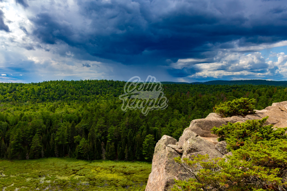 """Rain on the Horizon Over a Vast Forest"" stock image"