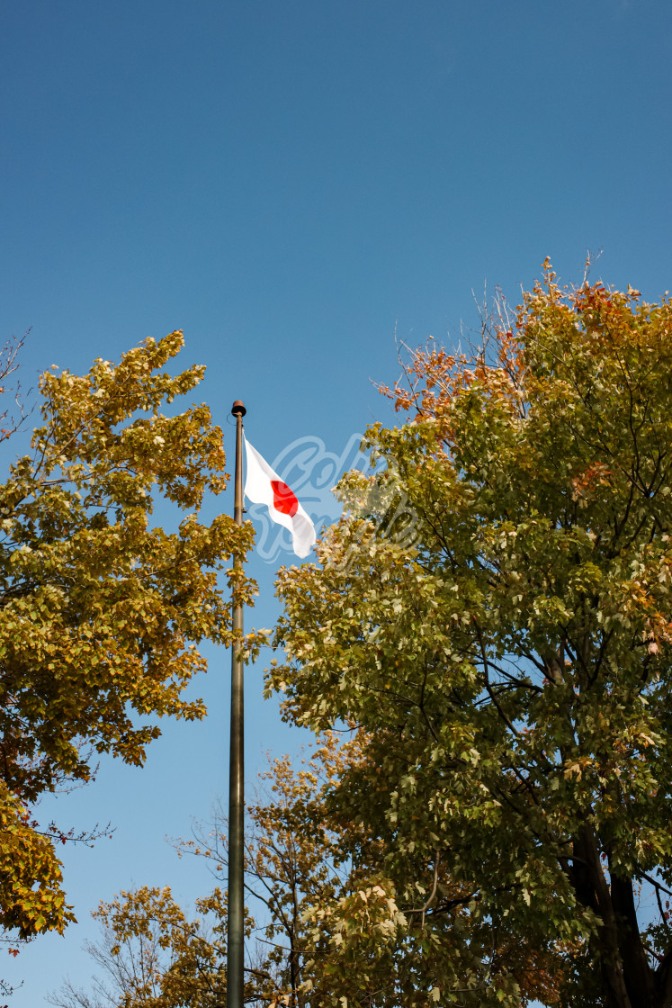 """A Japanese Flag (in Canada)"" stock image"