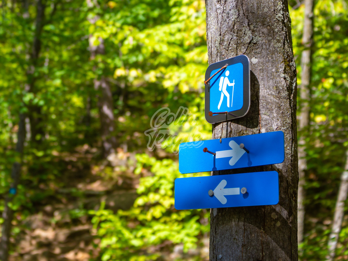 """Arrow Markers on a Trail Point Directions"" stock image"