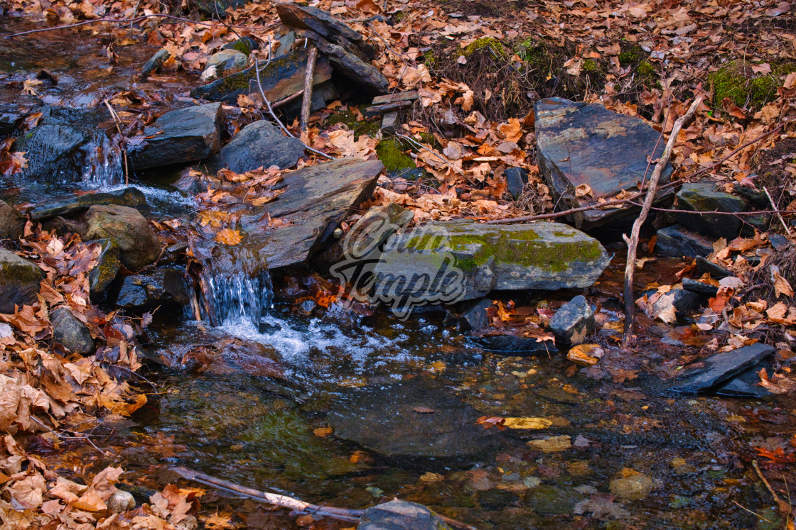 """""""Small waterfall in autumn forest stream"""" stock image"""