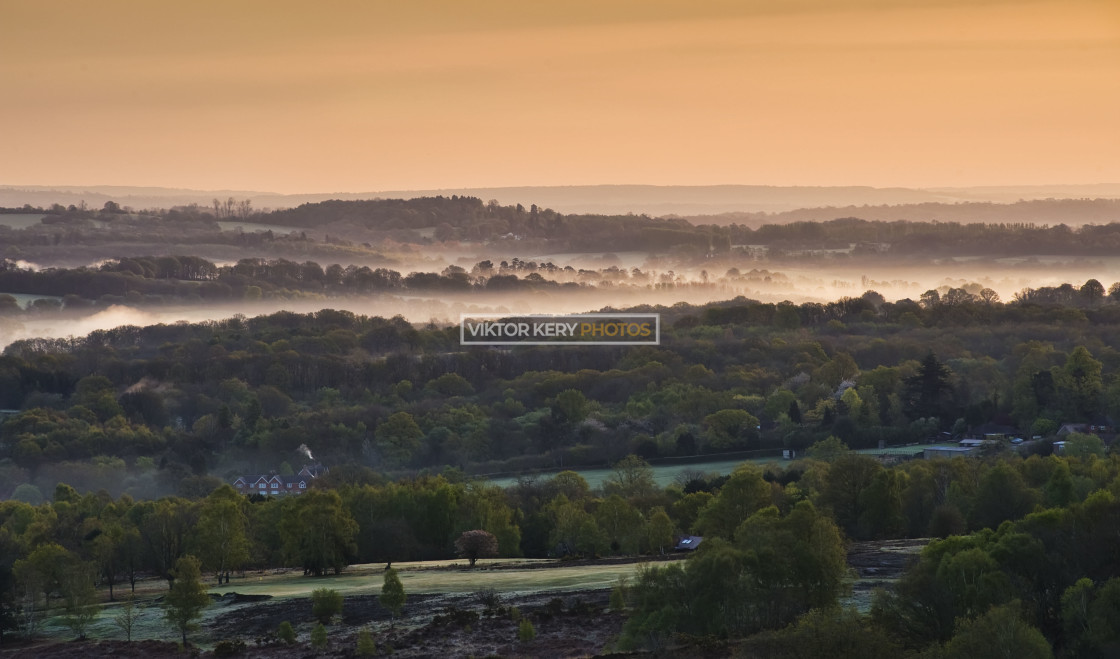 """""""Ashdown forest early morning"""" stock image"""