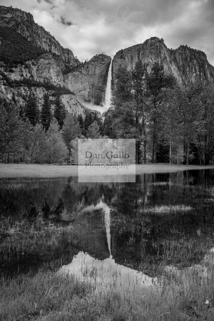 """Yosemite Falls Reflection"" stock image"