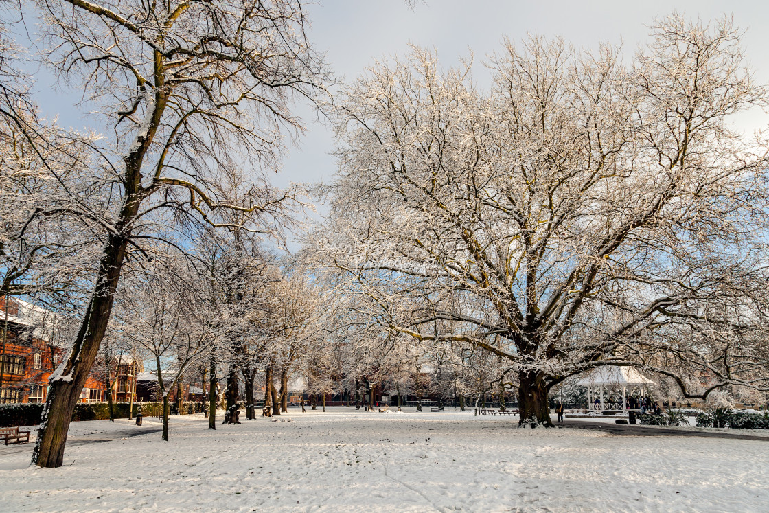 """A Beautifull Winters Day"" stock image"
