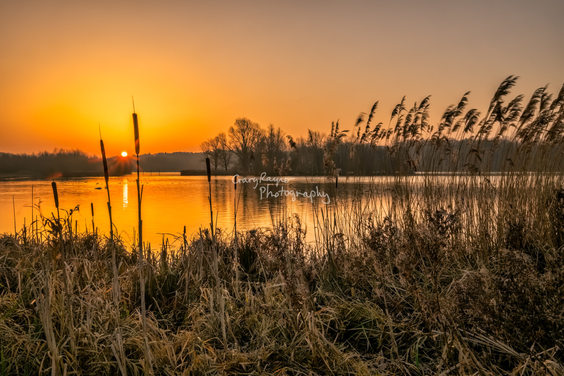 """""""New day Norfolk Broads"""" stock image"""