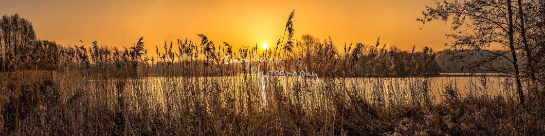 """""""Whitlingham Broad Sunrise"""" stock image"""