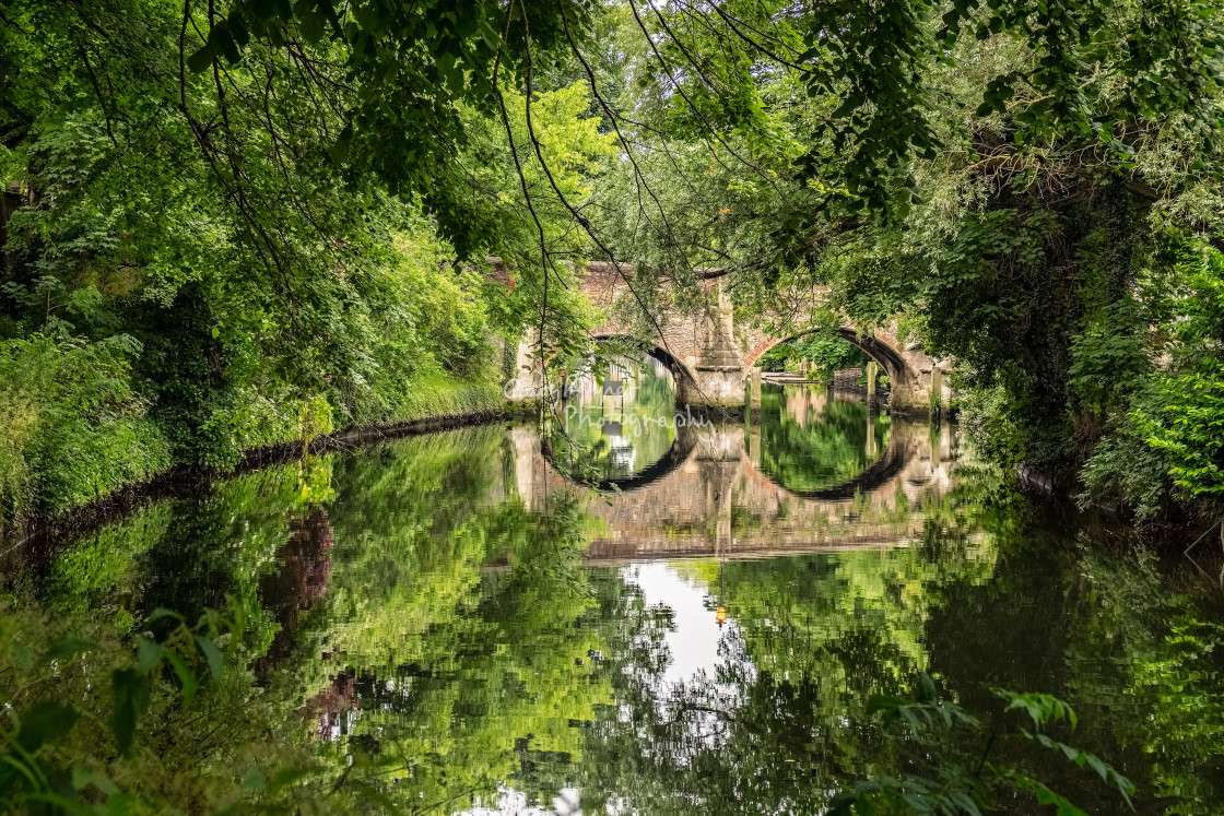 """Bishops Bridge through the Trees"" stock image"