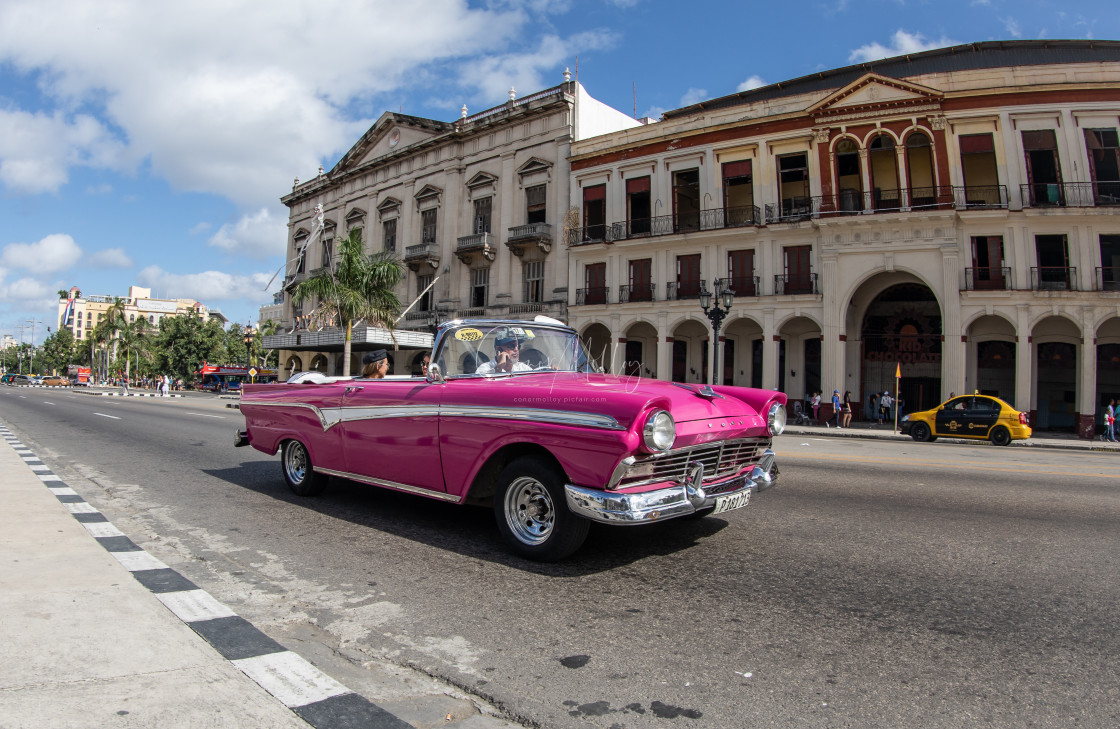 """""""The cars of Cuba"""" stock image"""