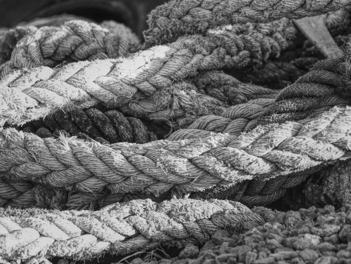 """""""Rope In"""" stock image"""