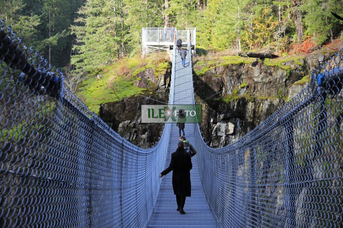 """""""Elk Falls suspension bridge (Canada)"""" stock image"""