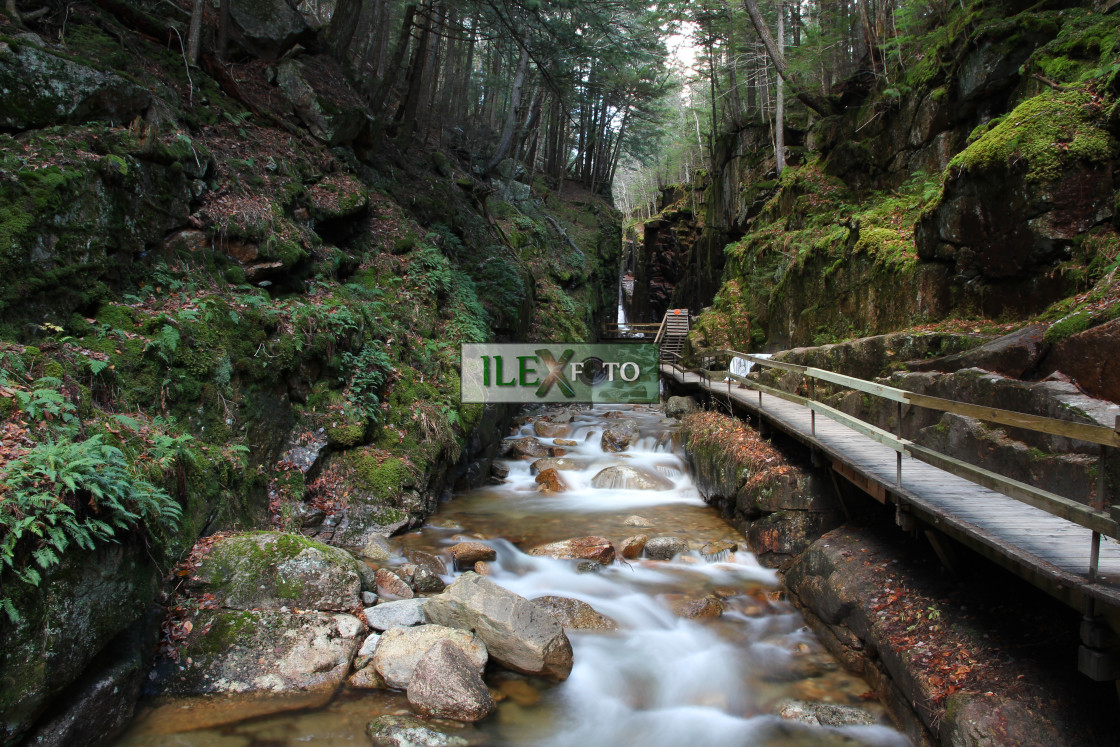 """Flume Brook gorge"" stock image"