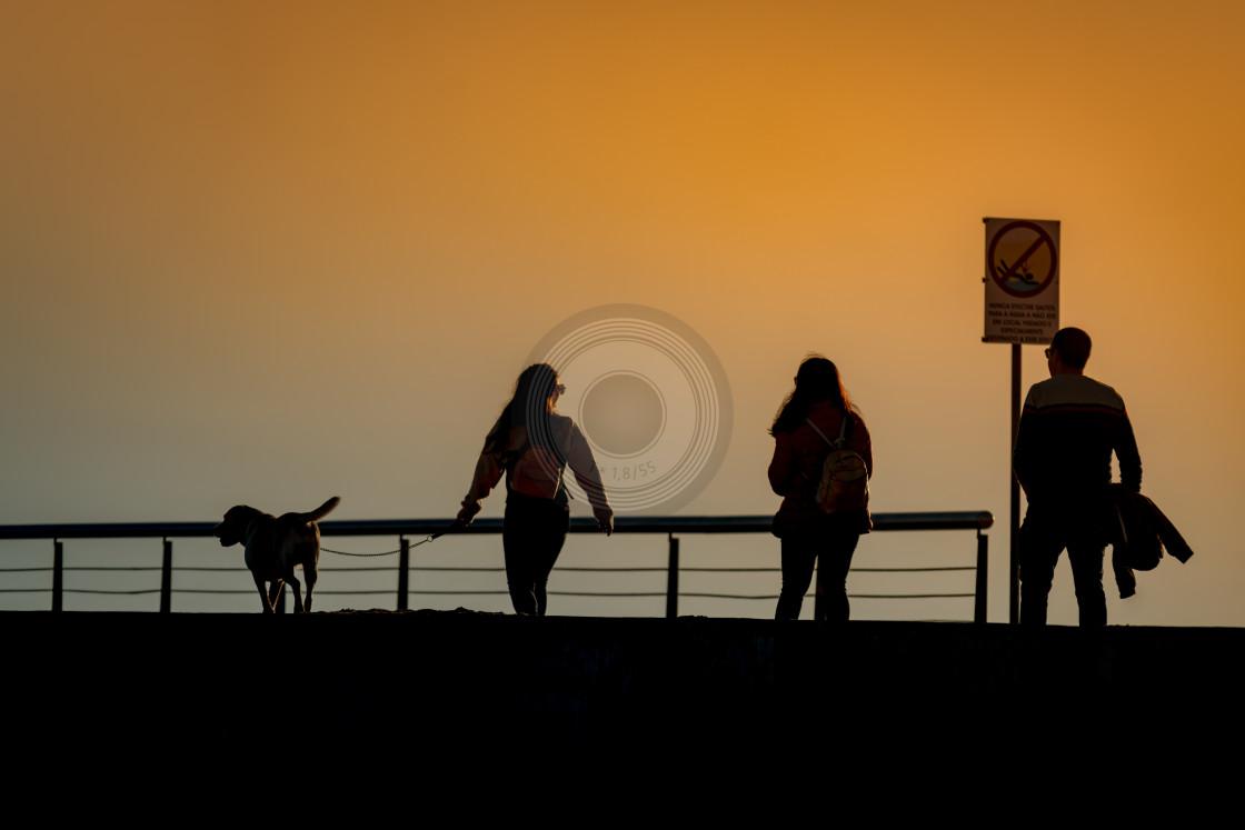 """Walking the dog at sunset"" stock image"
