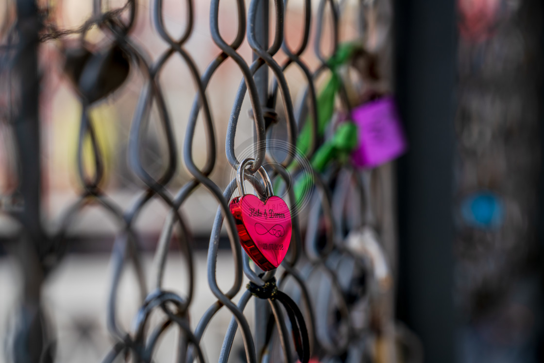 """""""Lockdown Love"""" stock image"""