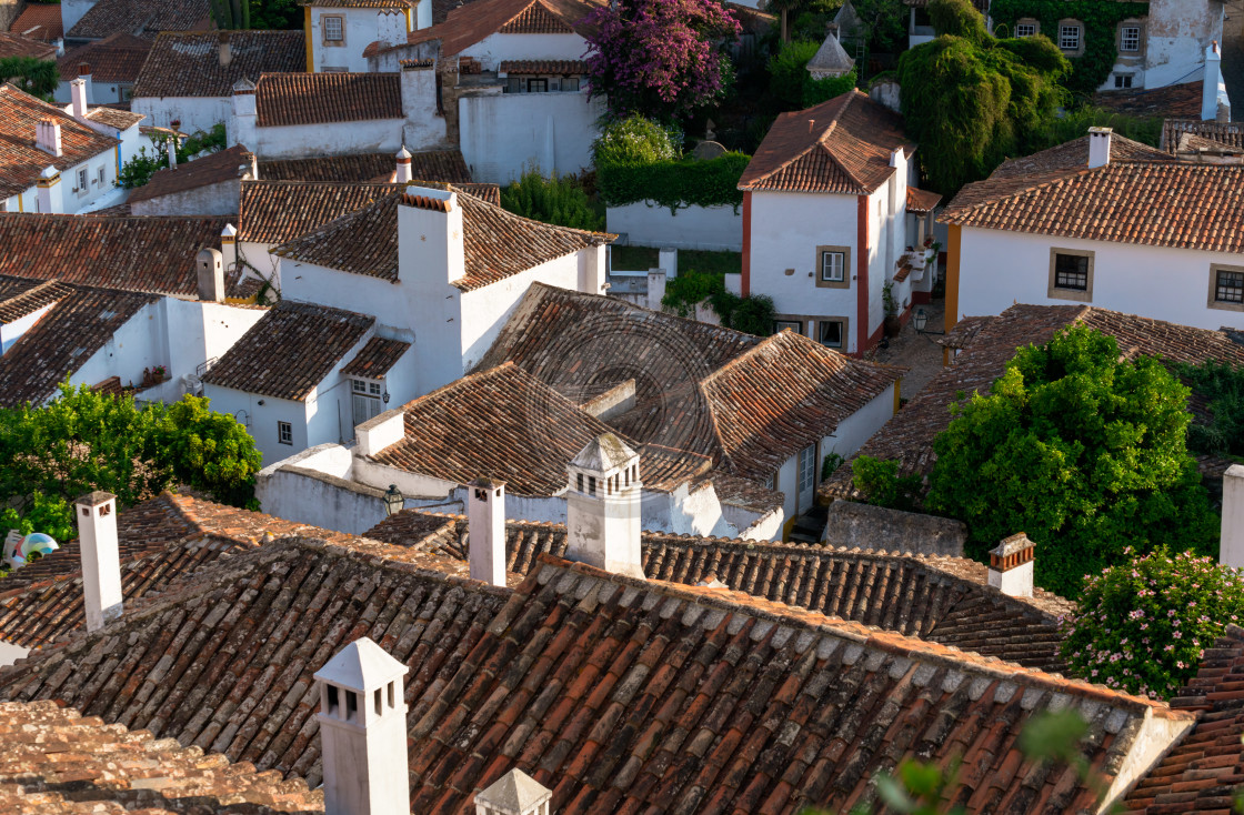 """View across Obidos rooftops"" stock image"