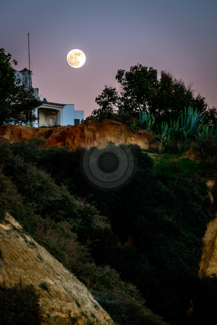 """Rising full moon"" stock image"