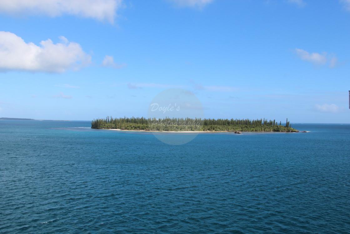 """Coastal Reef"" stock image"