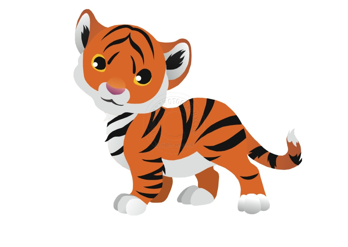 """Tiger Koolamooloo"" stock image"