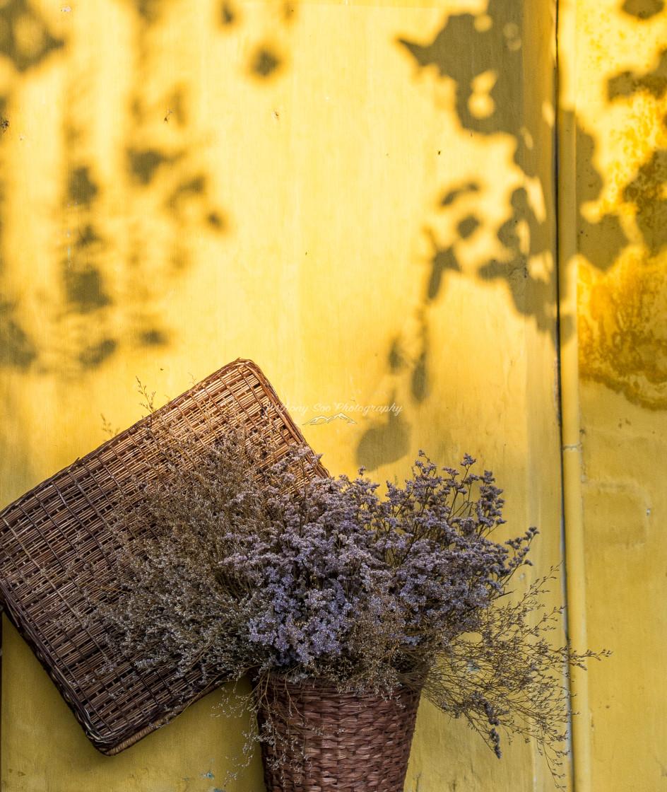 """""""Golden Light"""" stock image"""