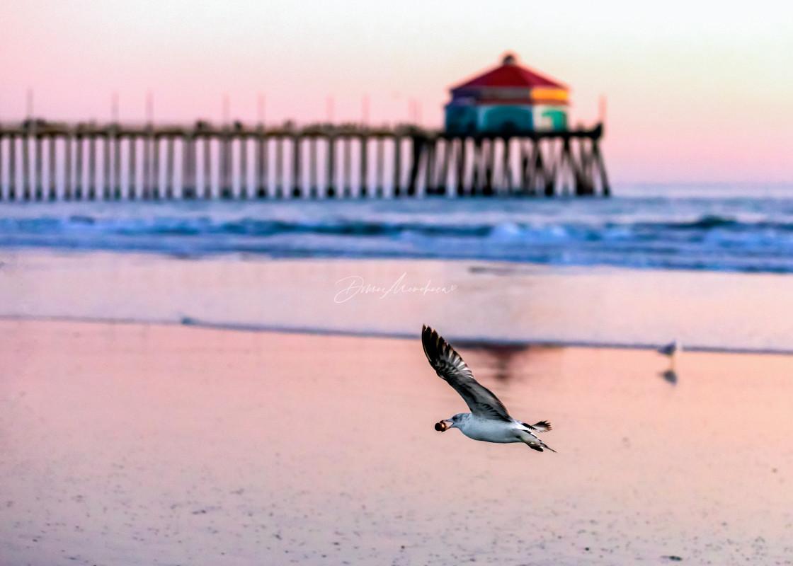"""""""Seagulls popping bottles"""" stock image"""