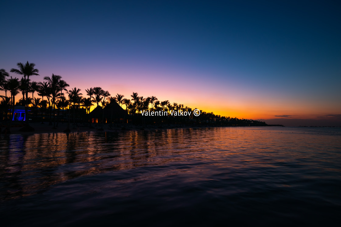 """""""Tropical island at night. Palm trees silhouettes and lights on r"""" stock image"""