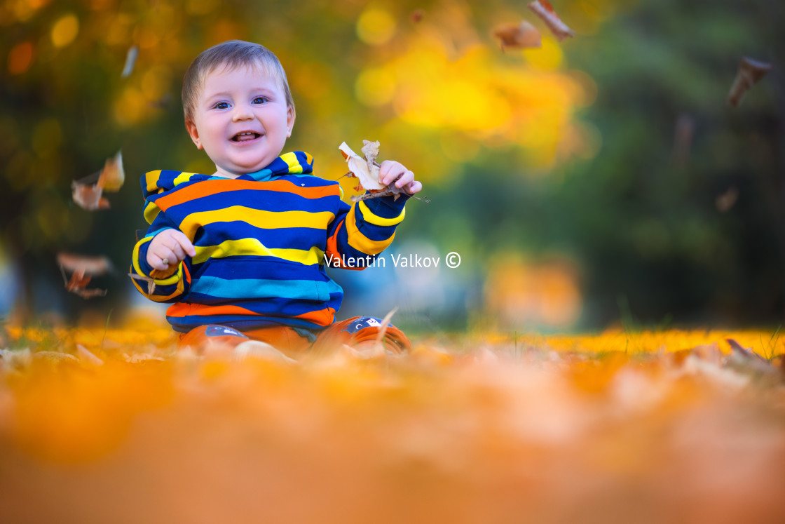 """Cute little baby boy play in autumn park with fallen leaves"" stock image"