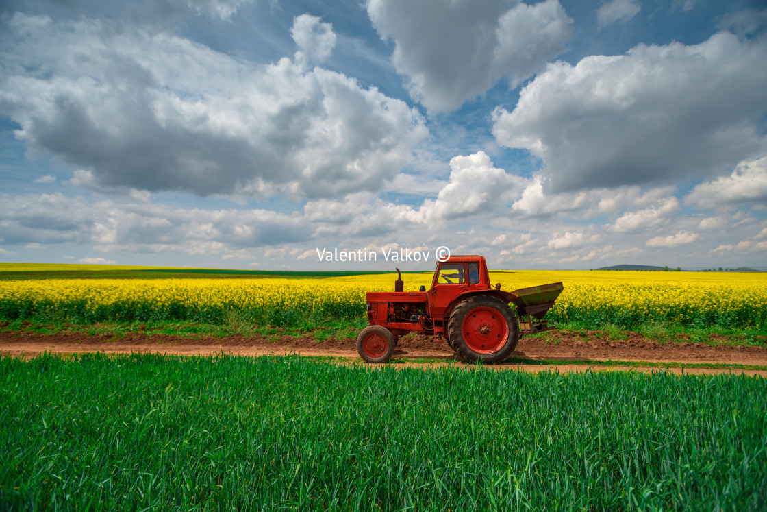 """""""Red tractor in a field"""" stock image"""