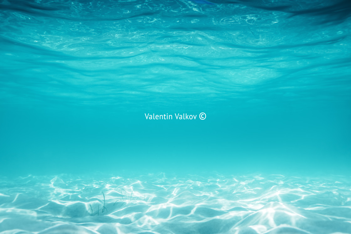 """""""Sea sand and blue water. Underwater. ocean background"""" stock image"""