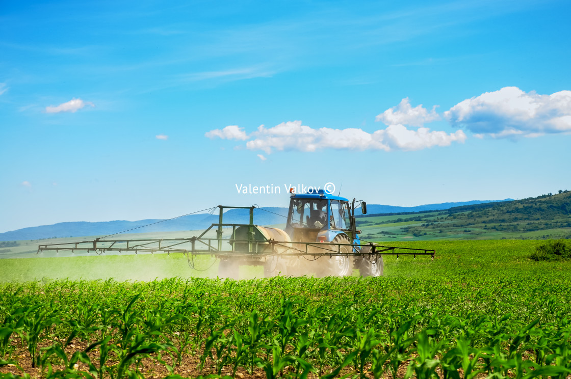 """""""Farming tractor plowing and spraying on field"""" stock image"""