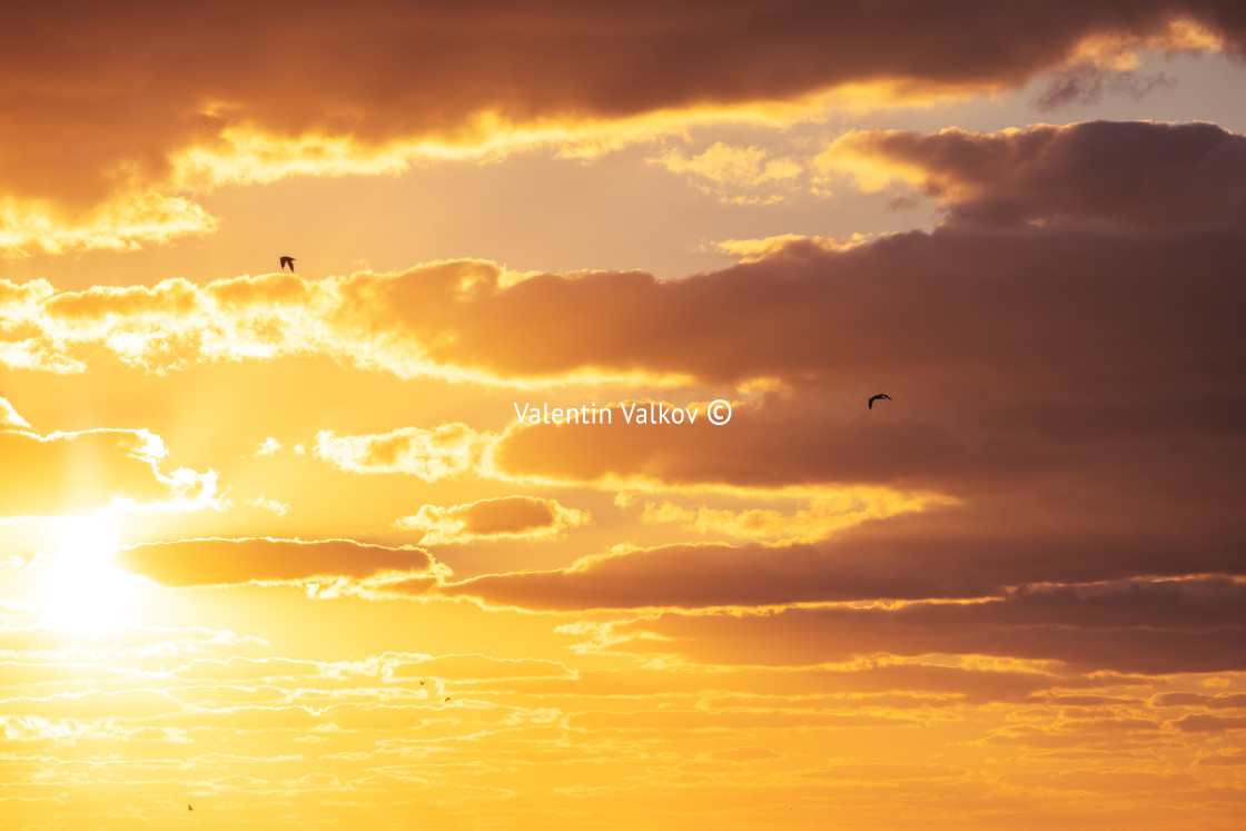 """""""Sunset dramatic sky clouds with sunbeam and flying birds"""" stock image"""