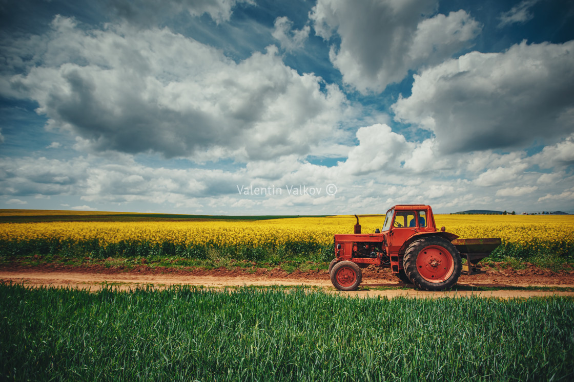 """Red tractor in a field"" stock image"
