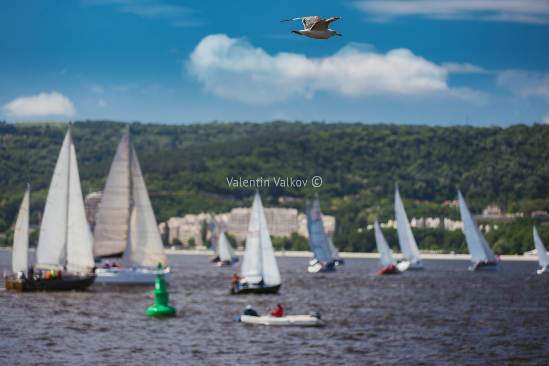 """Sailing Regatta in the wind through the waves at the sea"" stock image"
