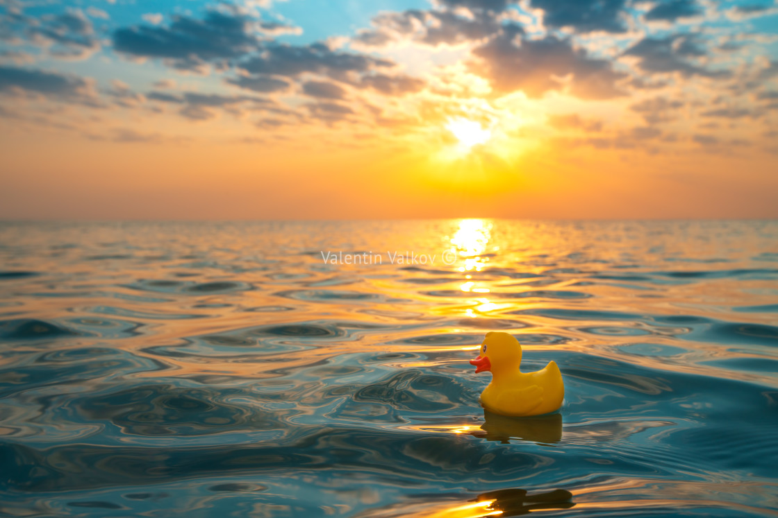 """""""Yellow rubber duck toy floating in sea water. Beautiful sunrise"""" stock image"""