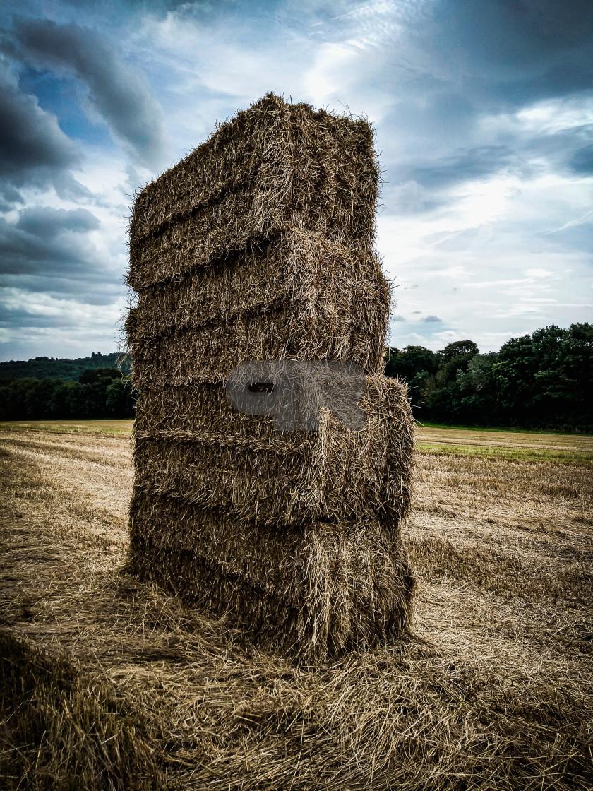 """""""Hay Monolith"""" stock image"""