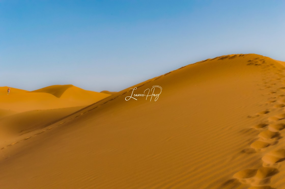 """The Sahara"" stock image"