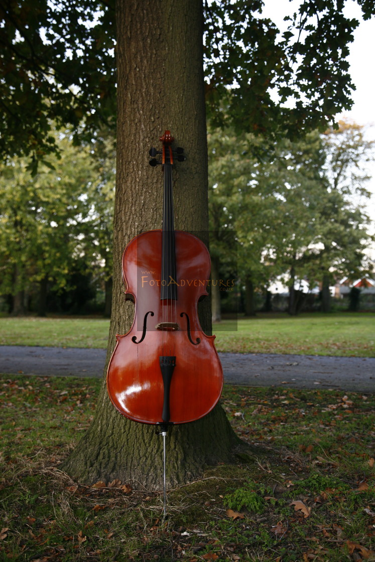 """Cello in the Park"" stock image"