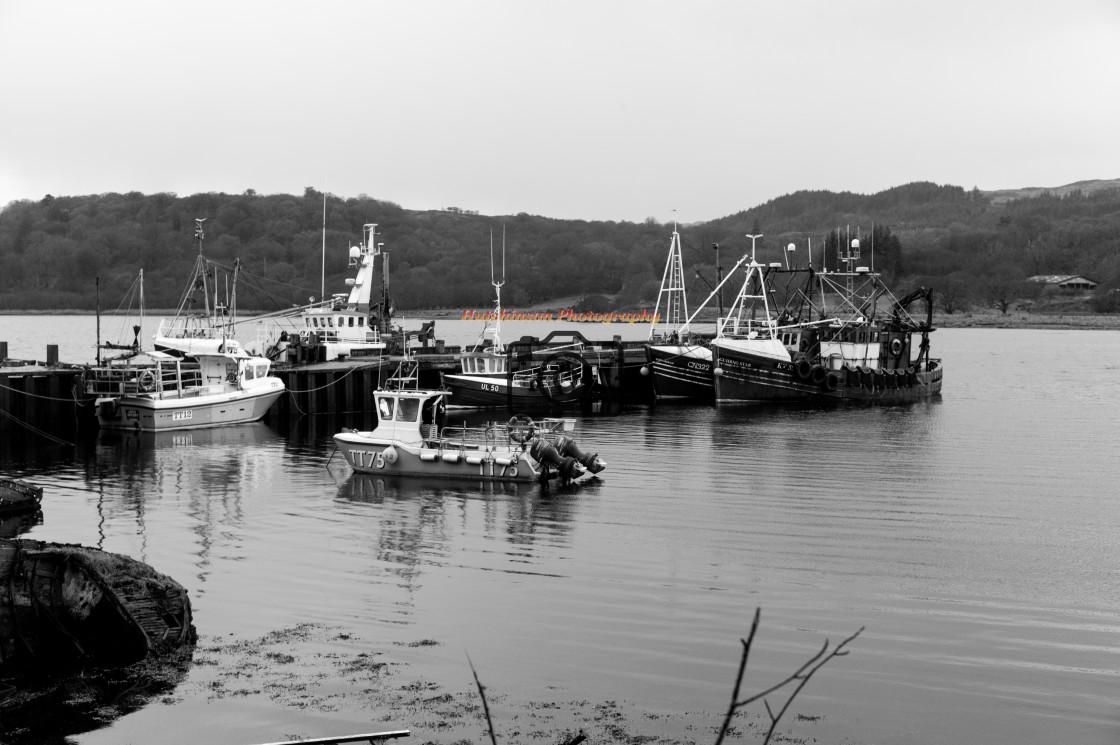 """""""West Pier Harbour Tarbert"""" stock image"""