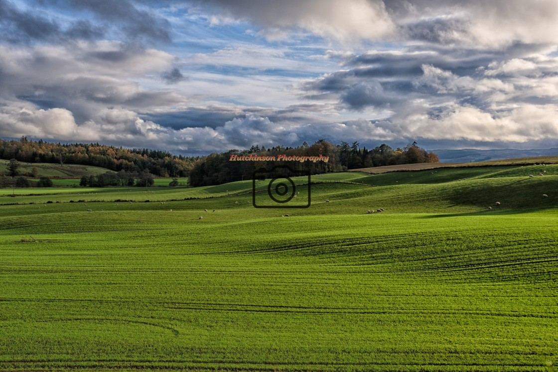 """""""Dumfries and Galloway Landscape, United Kingdom."""" stock image"""