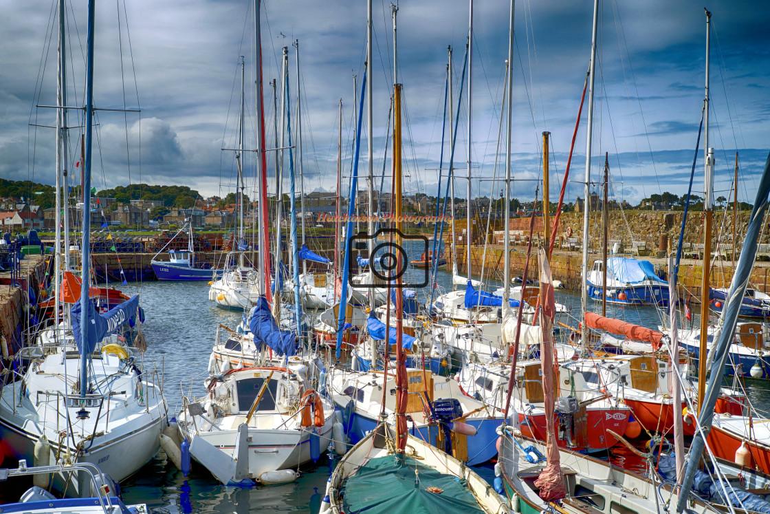 """Yachts in North Berwick Harbor"" stock image"